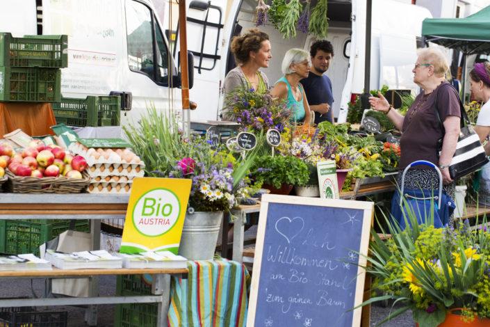 Biohof zum Grünen Baum Kutschkermarkt Markttag